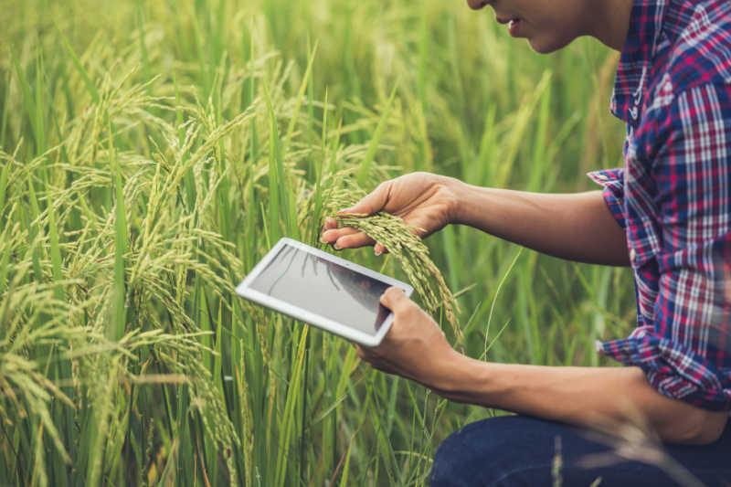 Normativa comunitaria en el Sector Agrario