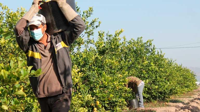 ASAJA aconseja llevar documentos que acrediten como agricultor