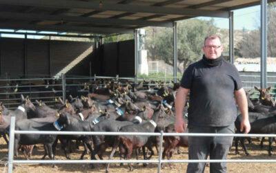 Los ganaderos calculan pérdidas de hasta 2 M/€ por cierre restauración