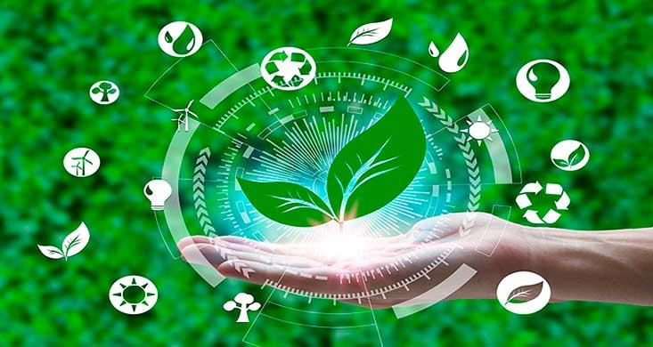Productores de medio ambiente