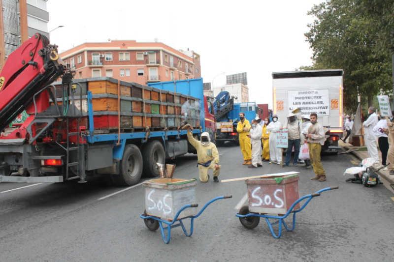protesta apicultura valencia