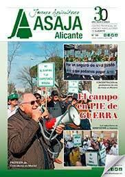 Revista 84